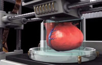 3-D printing of an organ