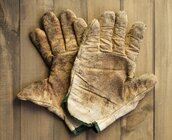 gloves, dirty jobs