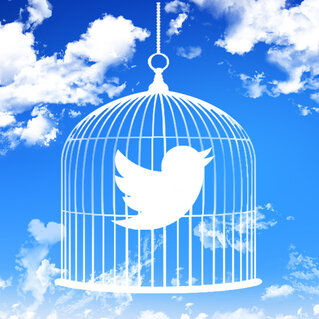twitter bird in a cage
