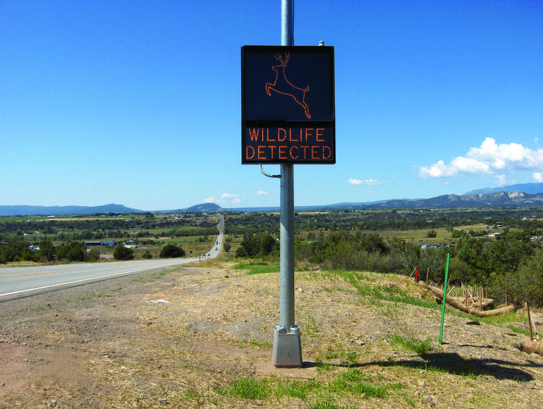wildlife, detection, sign, Colorado