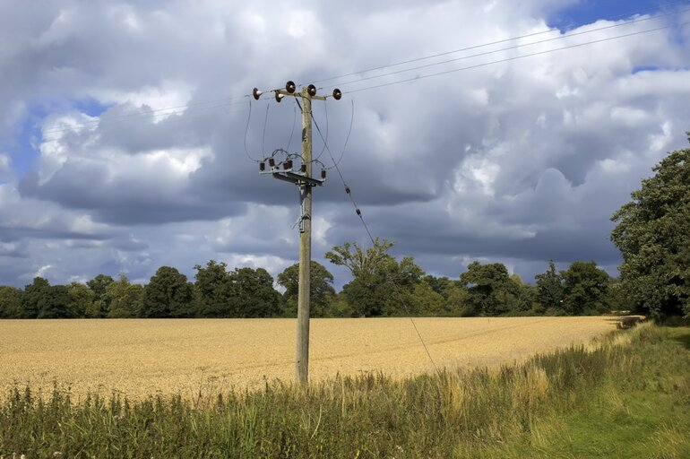 A rural field with telephone cables and wires