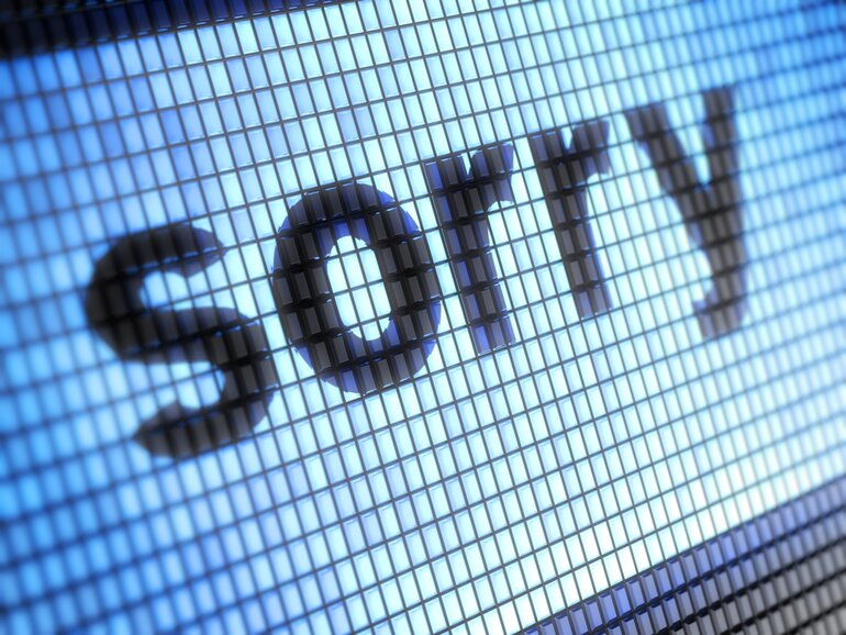"""""""Sorry"""" image on a computer screen"""