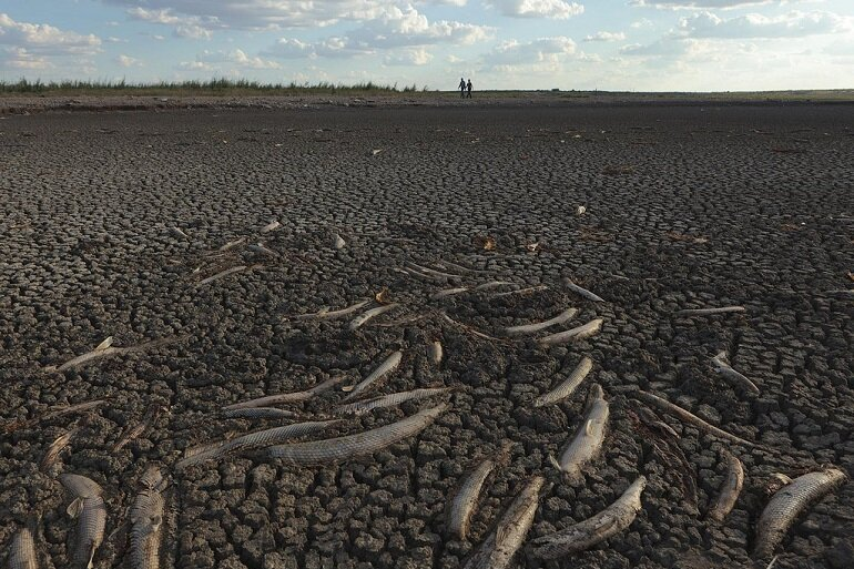 texas water drought The texas living waters project is committed to protecting our shared water resources by helping texas plan for inevitable drought we do this by.