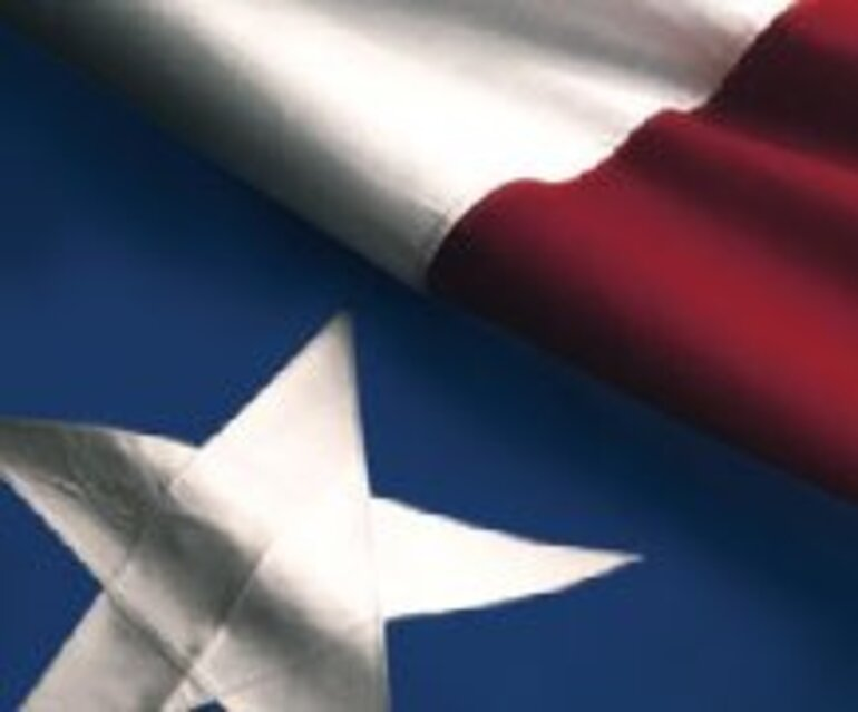 Texas Flag/Photo courtesy of U.S. House of Representatives