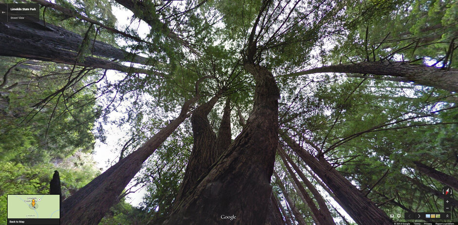 California Google Partner To Map Trails And Parks - Google maps trails