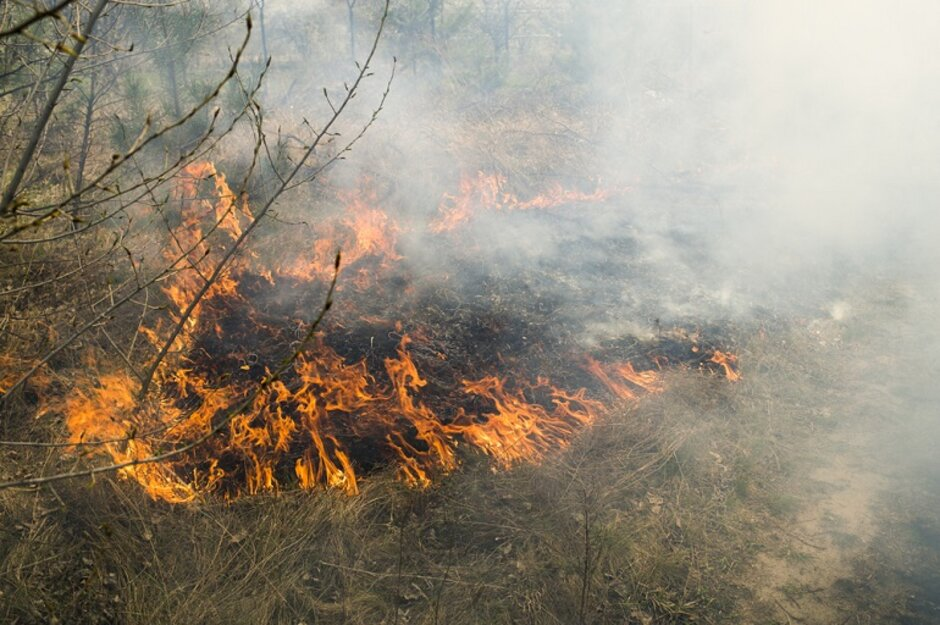 Colorado Wildfire Update Post Fire Flooding Big Concern After